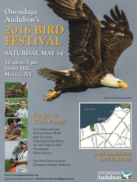 2016 Derby Hill Festival Poster