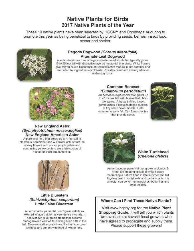 native-plants-for-birds-2017-ho-page-1