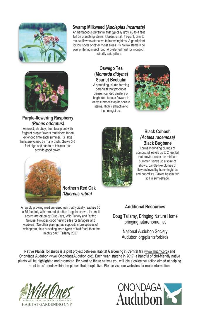 native-plants-for-birds-2017-ho-page-2