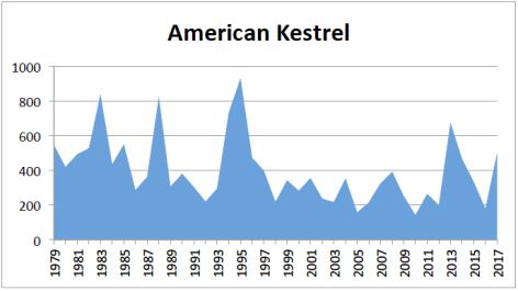 A Kestrel 2017