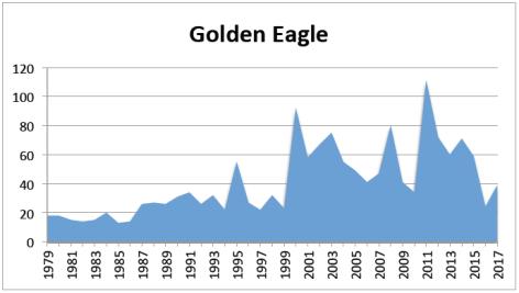 G Eagle 2017