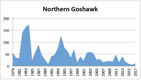 N Goshawk 2017