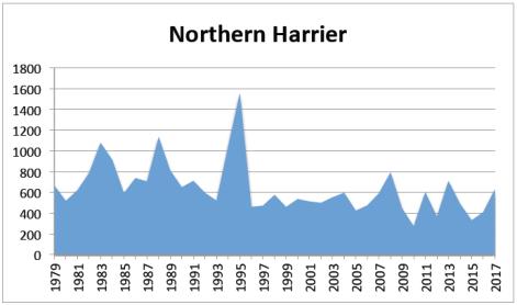N Harrier 2017