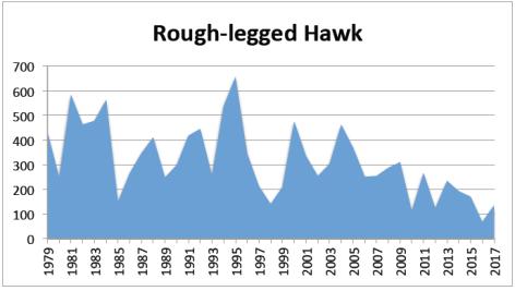 RL Hawk 2017