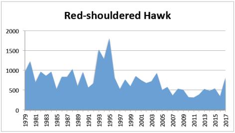 RS Hawk 2017