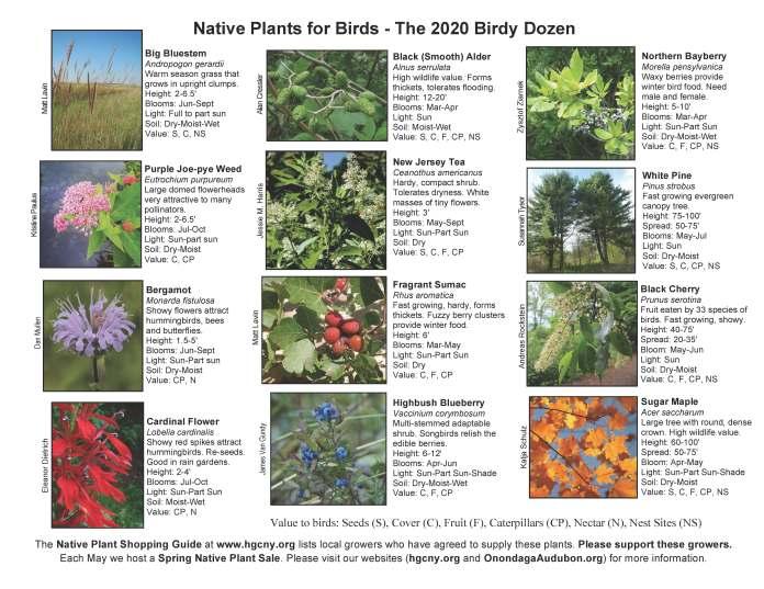 Brochure 2020 inner page PDF FINAL
